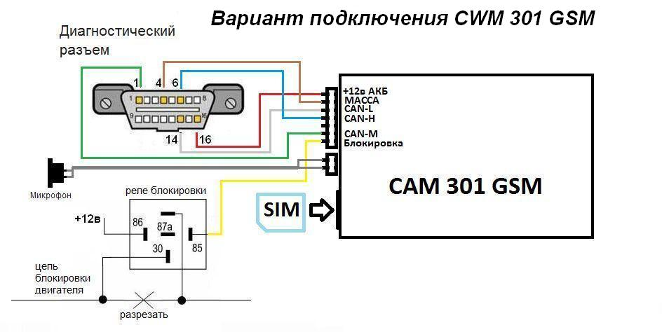 cam301_ (3)